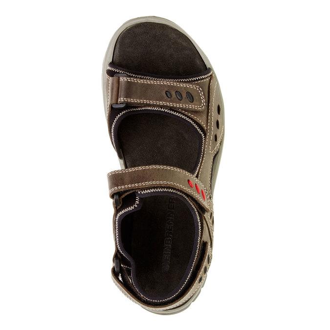 Męskie skórzane sandały weinbrenner, brązowy, 866-2105 - 19