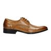 Skórzane półbuty męskie ze zdobieniami bata, brązowy, 826-3821 - 15